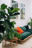Интериорни озеленяване